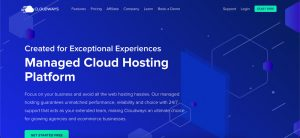 Brown Surfing Hosting Providers Cloudways
